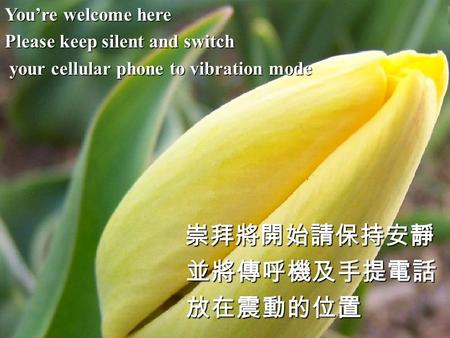 You're welcome here Please keep silent and switch your cellular phone to vibration mode your cellular phone to vibration mode崇拜將開始請保持安靜 並將傳呼機及手提電話 並將傳呼機及手提電話.