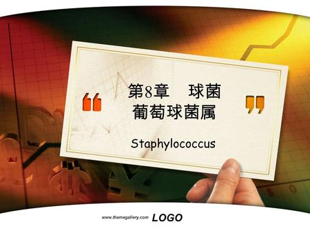 LOGO www.themegallery.com 第 8 章 球菌 葡萄球菌属 Staphylococcus.