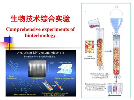 Comprehensive experiments of biotechnology