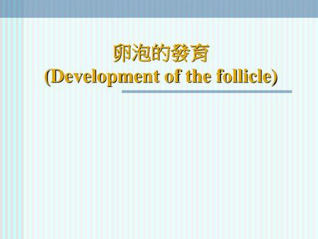 卵泡的發育 (Development of the follicle)