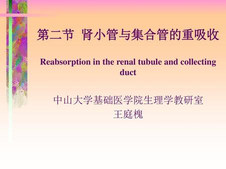 第二节 肾小管与集合管的重吸收 Reabsorption in the renal tubule and collecting duct