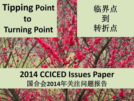 Tipping Point to Turning Point 2014 CCICED Issues Paper 临界点 到 转折点
