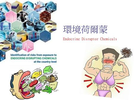 環境荷爾蒙 Endocrine Disruptor Chemicals.
