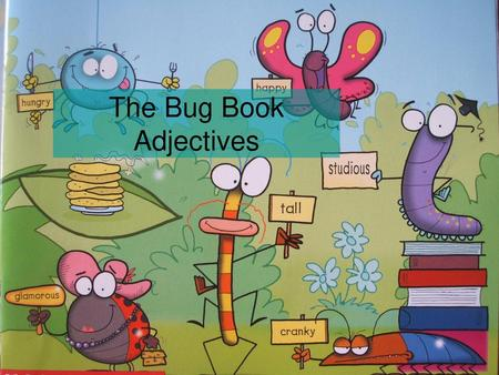 The Bug Book Adjectives