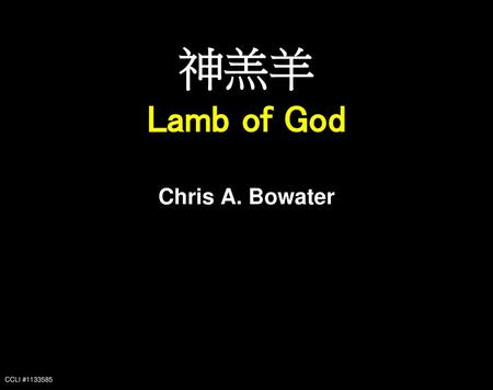 神羔羊 Lamb of God Chris A. Bowater CCLI #1133585.