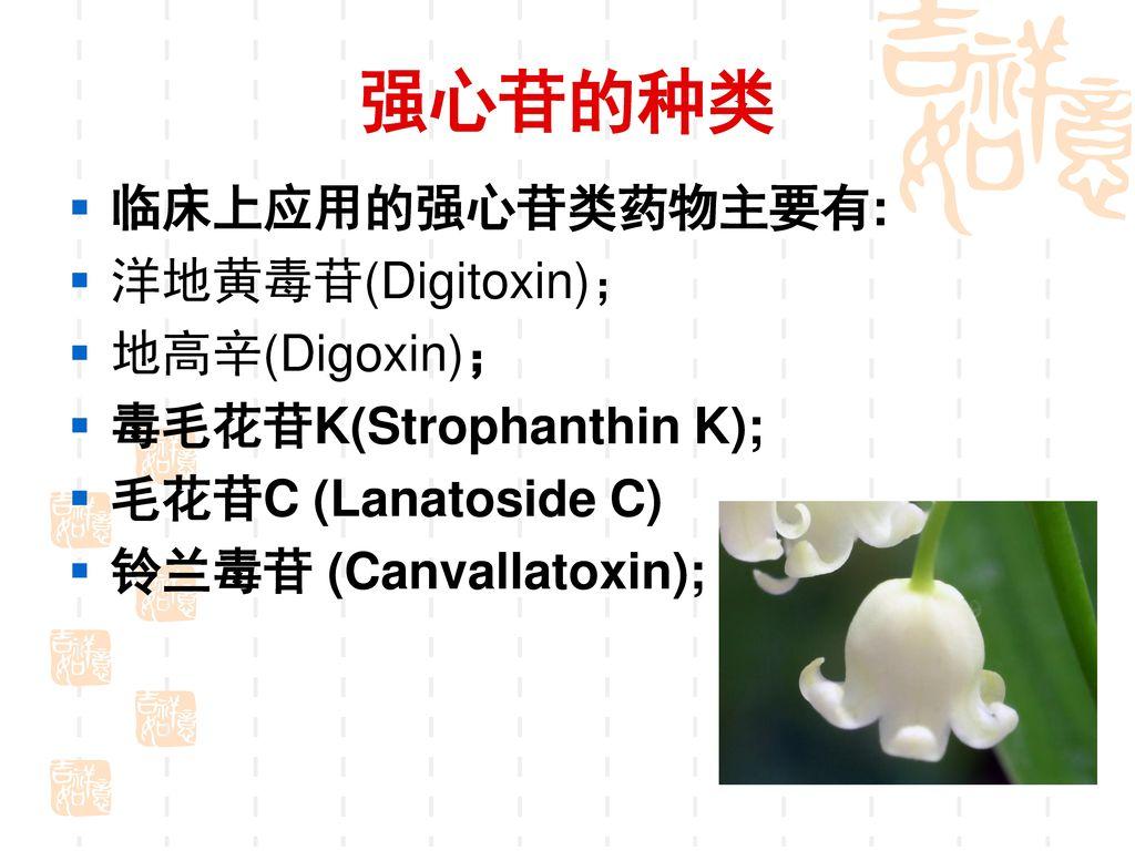 强心苷的种类 临床上应用的强心苷类药物主要有: 洋地黄毒苷(Digitoxin); 地高辛(Digoxin);
