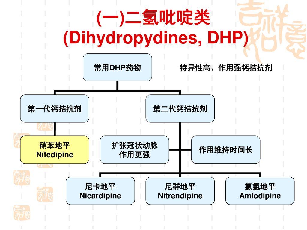(一)二氢吡啶类 (Dihydropydines, DHP)