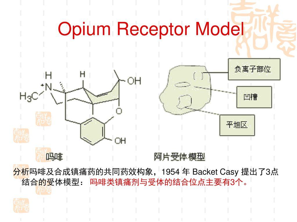 Opium Receptor Model 分析吗啡及合成镇痛药的共同药效构象,1954 年 Backet Casy 提出了3点结合的受体模型: 吗啡类镇痛剂与受体的结合位点主要有3个。