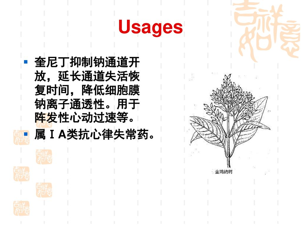 钠通道阻滞剂 (Sodium Channels antagonists)
