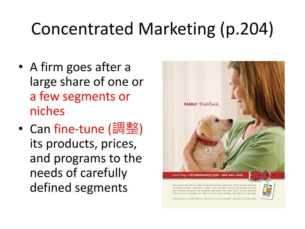 Concentrated Marketing (p.204)