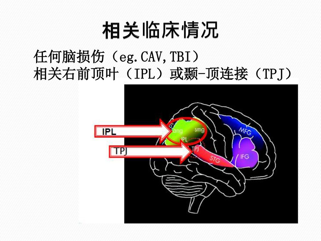 lundy ekman neuroscience fundamentals for rehabilitation pdf