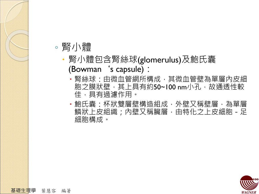 腎小體 腎小體包含腎絲球(glomerulus)及鮑氏囊(Bowman's capsule):