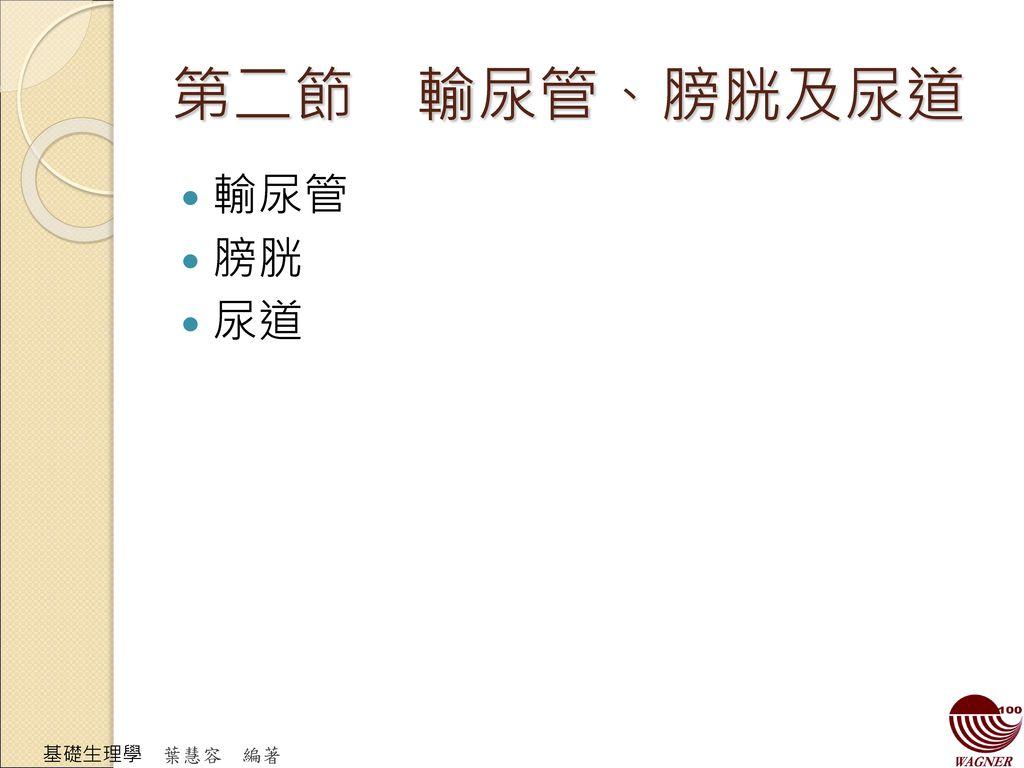 第二節 輸尿管、膀胱及尿道 輸尿管 膀胱 尿道