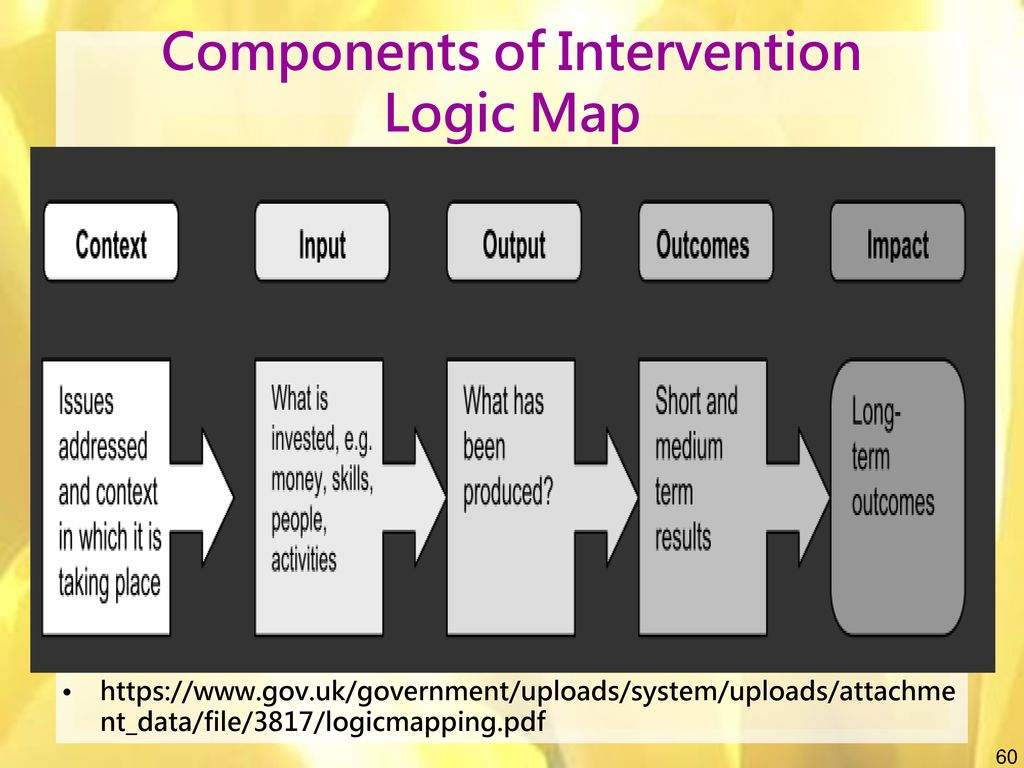 Components of Intervention Logic Map