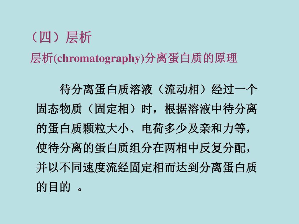 (四)层析 层析(chromatography)分离蛋白质的原理