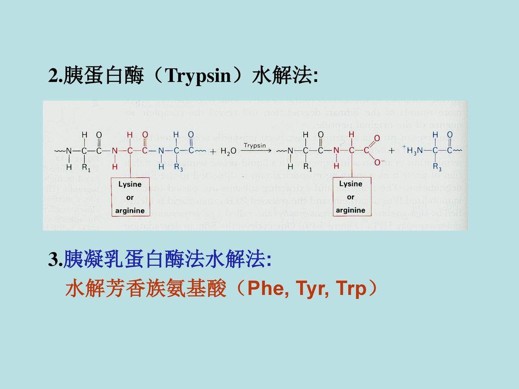 2.胰蛋白酶(Trypsin)水解法: 3.胰凝乳蛋白酶法水解法: 水解芳香族氨基酸(Phe, Tyr, Trp)