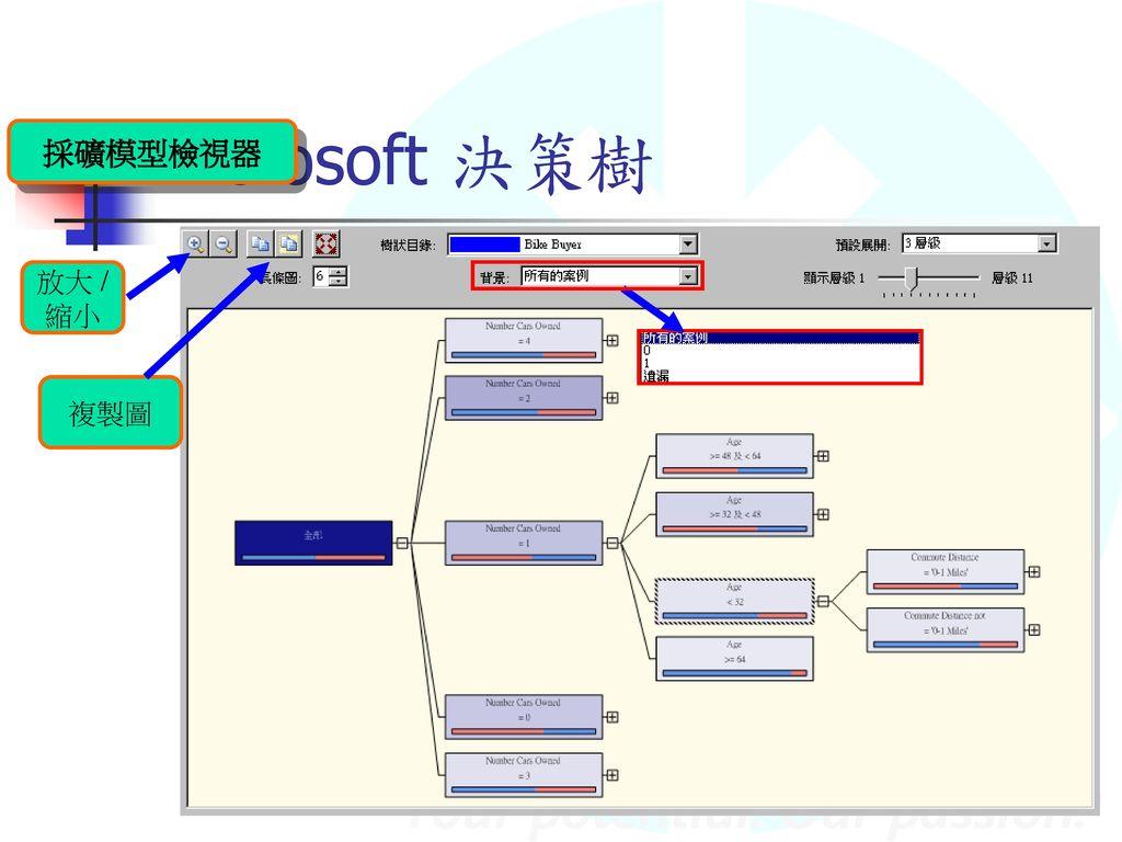 Microsoft 決策樹 採礦模型檢視器 放大 /縮小 複製圖