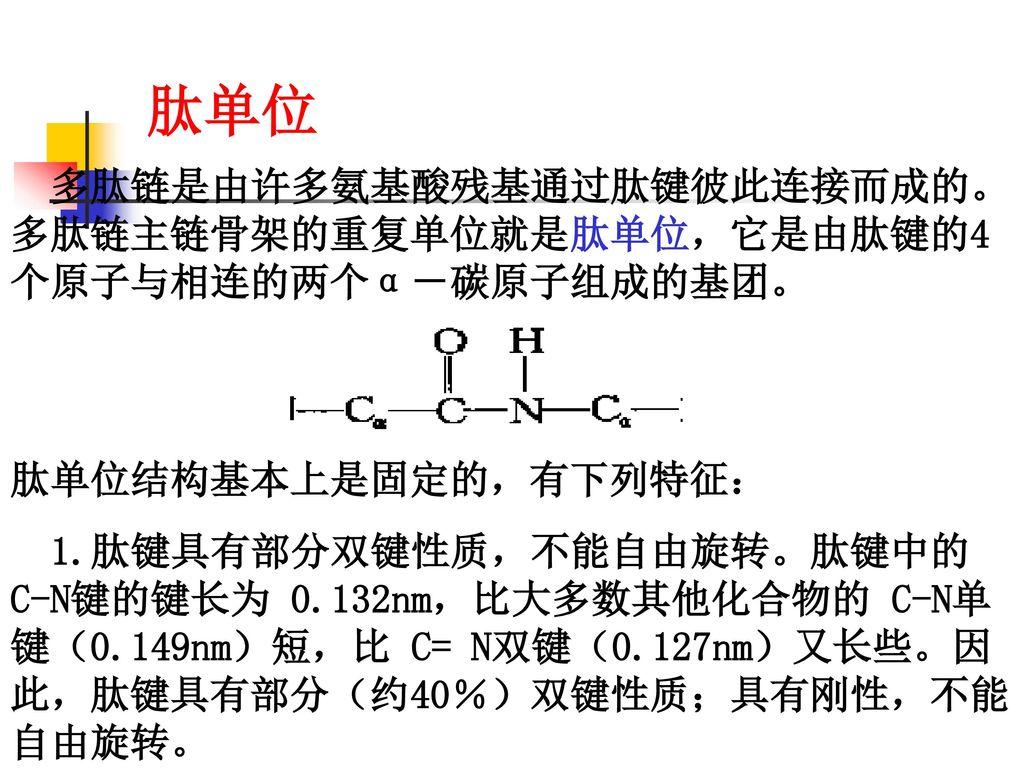 肽单位 肽单位结构基本上是固定的,有下列特征: