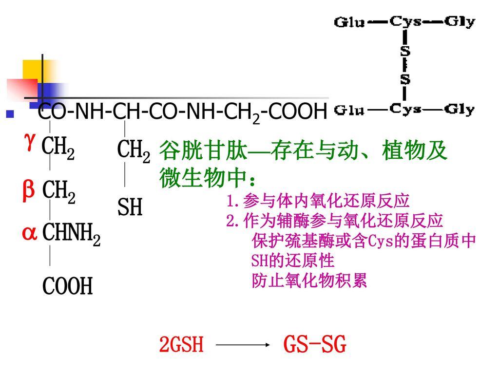 CH2 CH2 GS-SG  CH2 SH  CHNH2 COOH CO-NH-CH-CO-NH-CH2-COOH