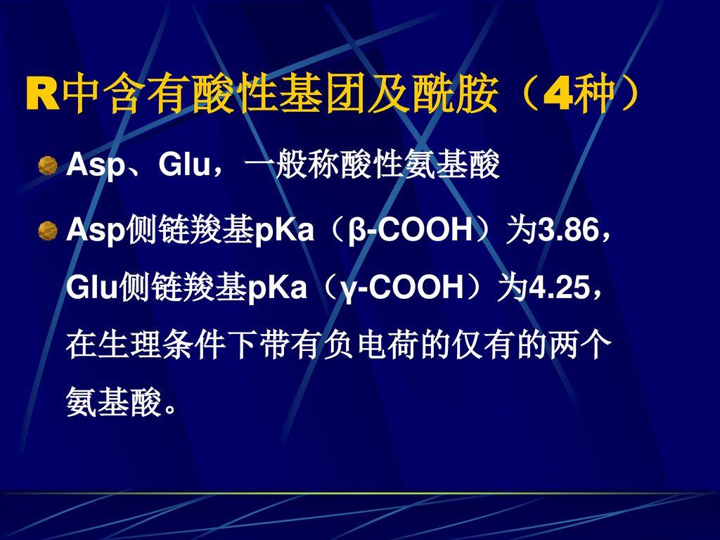 R中含有酸性基团及酰胺(4种) Asp、Glu,一般称酸性氨基酸