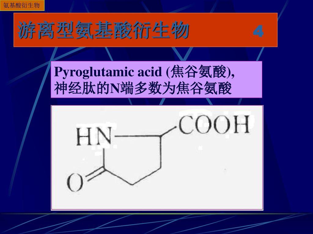 氨基酸衍生物 游离型氨基酸衍生物 4 Pyroglutamic acid (焦谷氨酸), 神经肽的N端多数为焦谷氨酸