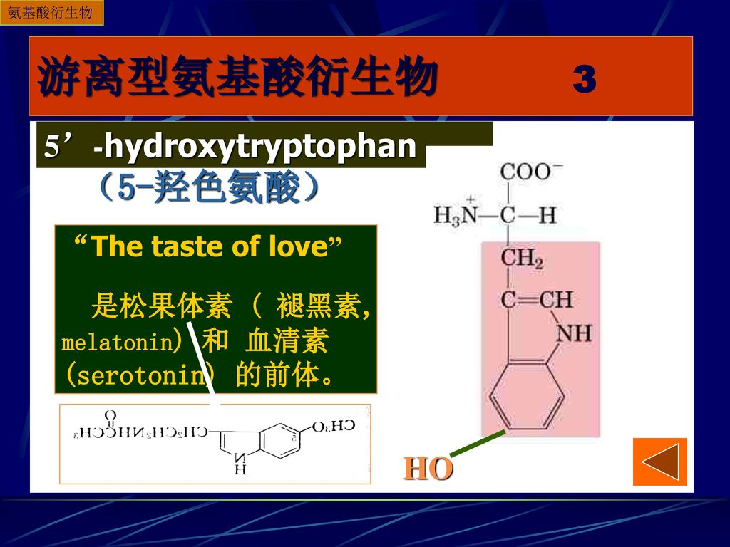 游离型氨基酸衍生物 3 (5-羟色氨酸) 5'-hydroxytryptophan HO The taste of love