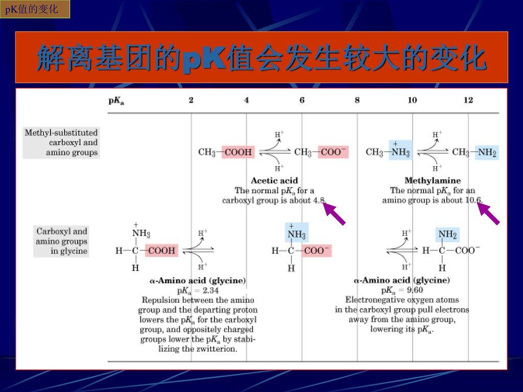 pK值的变化 解离基团的pK值会发生较大的变化