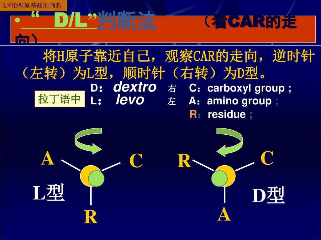 D/L 判断法 (看CAR的走向) A C C R L型 D型 A R