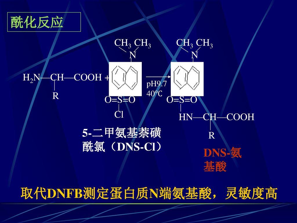 取代DNFB测定蛋白质N端氨基酸,灵敏度高
