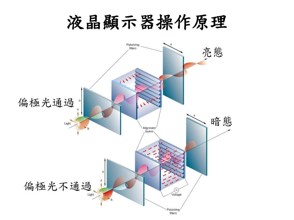 液晶顯示器操作原理 亮態 偏極光通過 暗態 偏極光不通過
