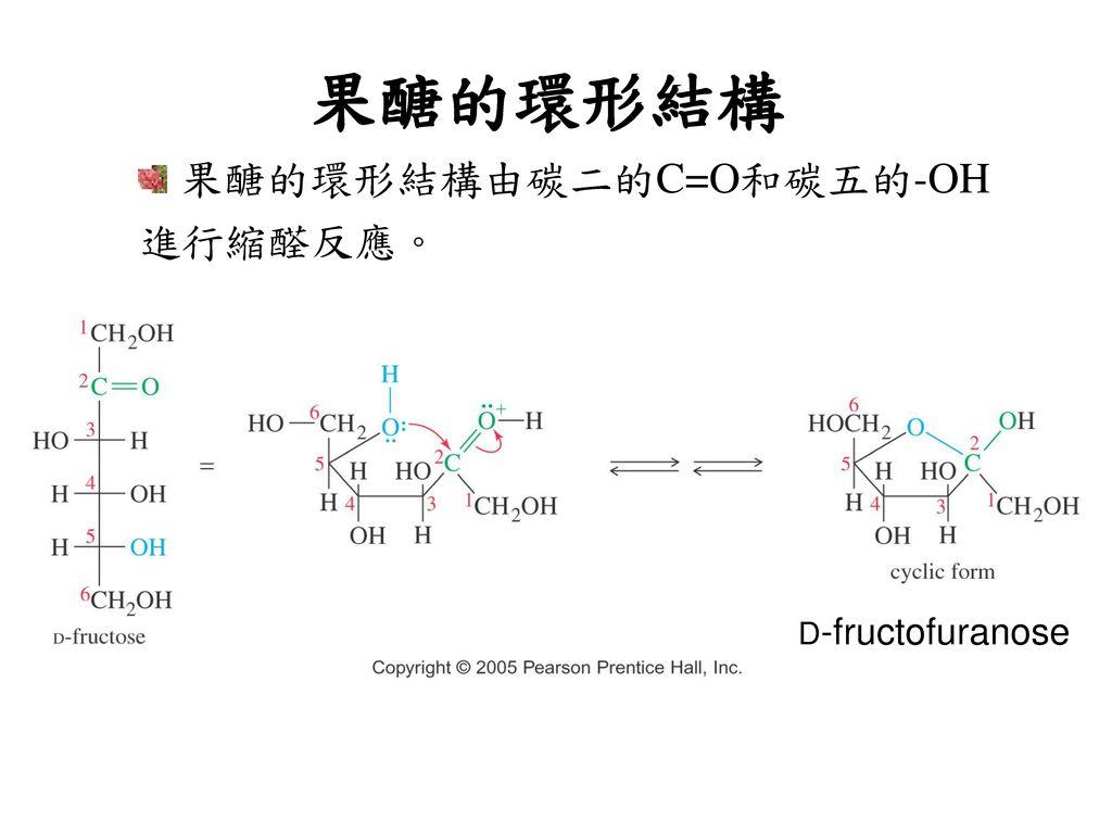 果醣的環形結構 果醣的環形結構由碳二的C=O和碳五的-OH 進行縮醛反應。 D-fructofuranose