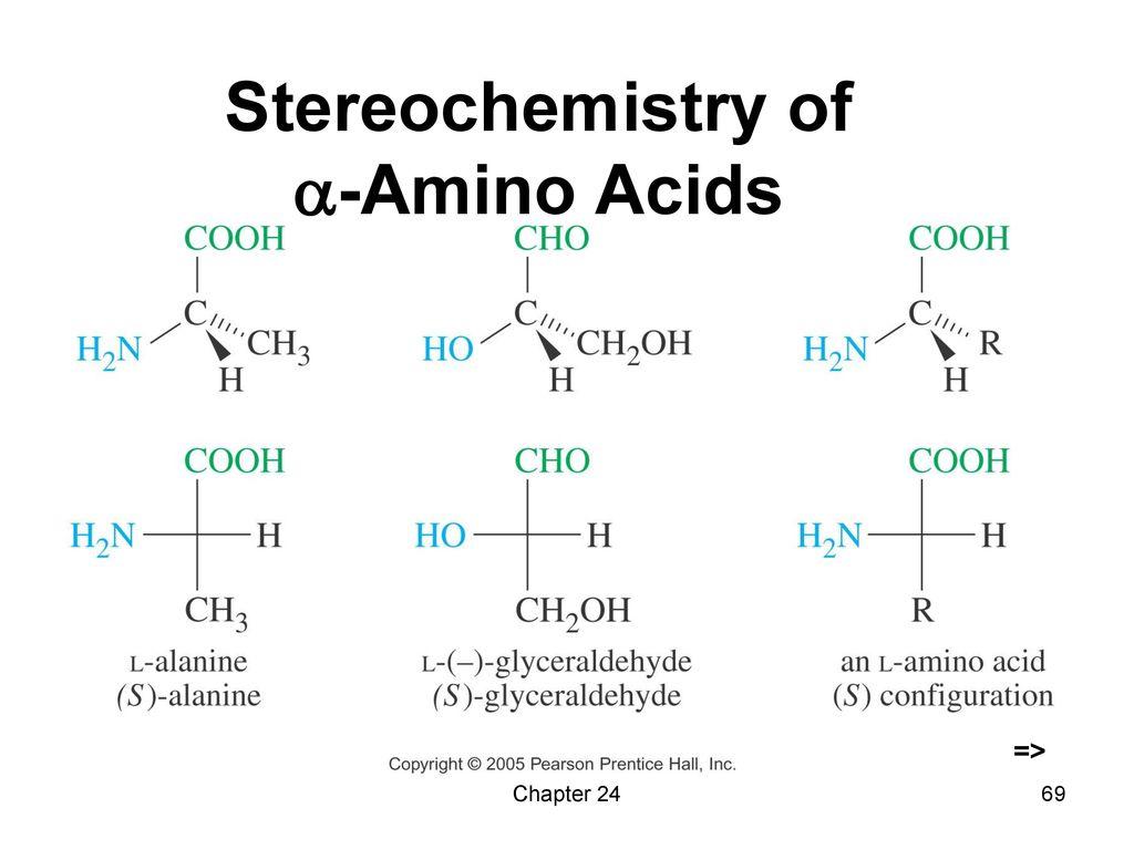 Stereochemistry of -Amino Acids