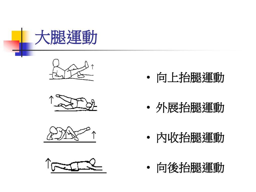 大腿運動 向上抬腿運動 外展抬腿運動 內收抬腿運動 向後抬腿運動