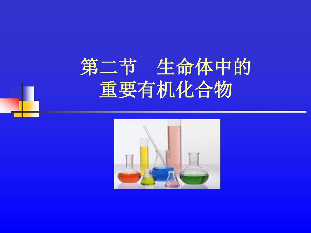 第二节 生命体中的 重要有机化合物