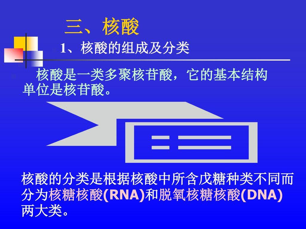 三、核酸 核酸是一类多聚核苷酸,它的基本结构单位是核苷酸。