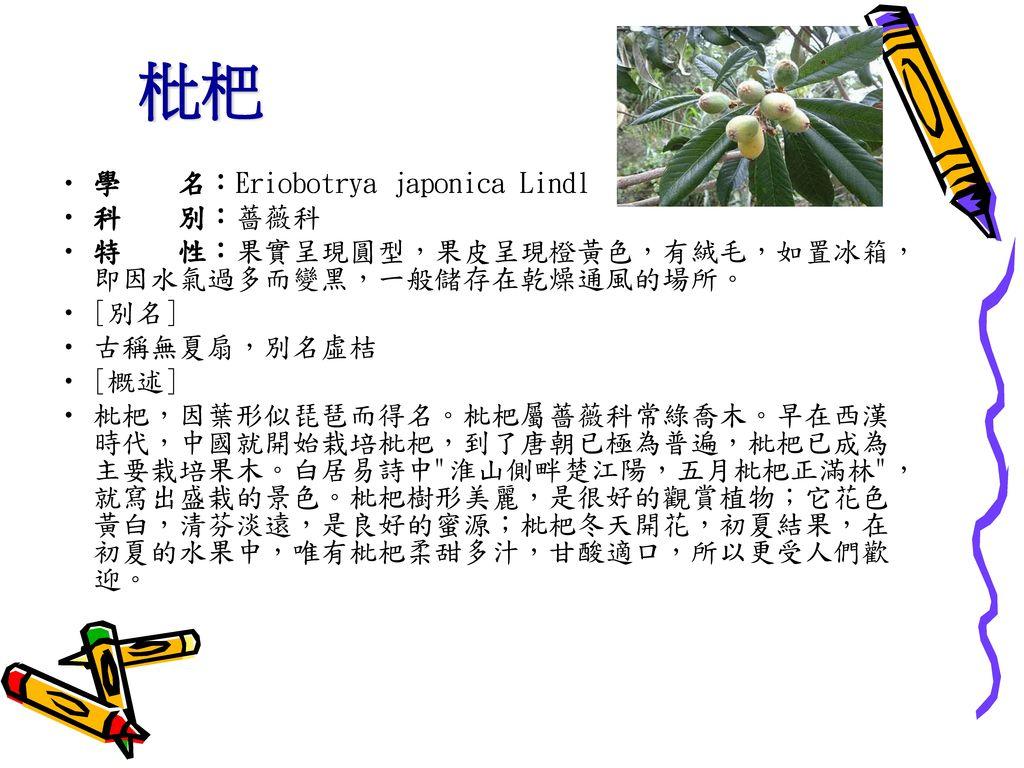 枇杷 學 名:Eriobotrya japonica Lindl 科 別:薔薇科