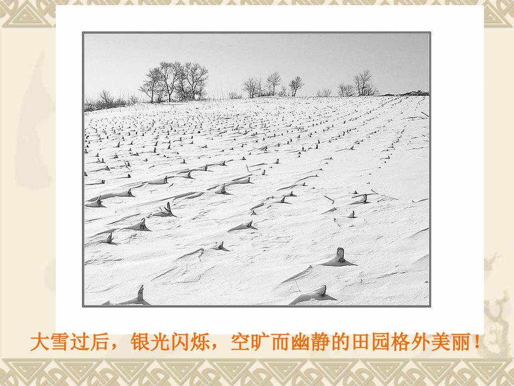 大雪过后,银光闪烁,空旷而幽静的田园格外美丽!