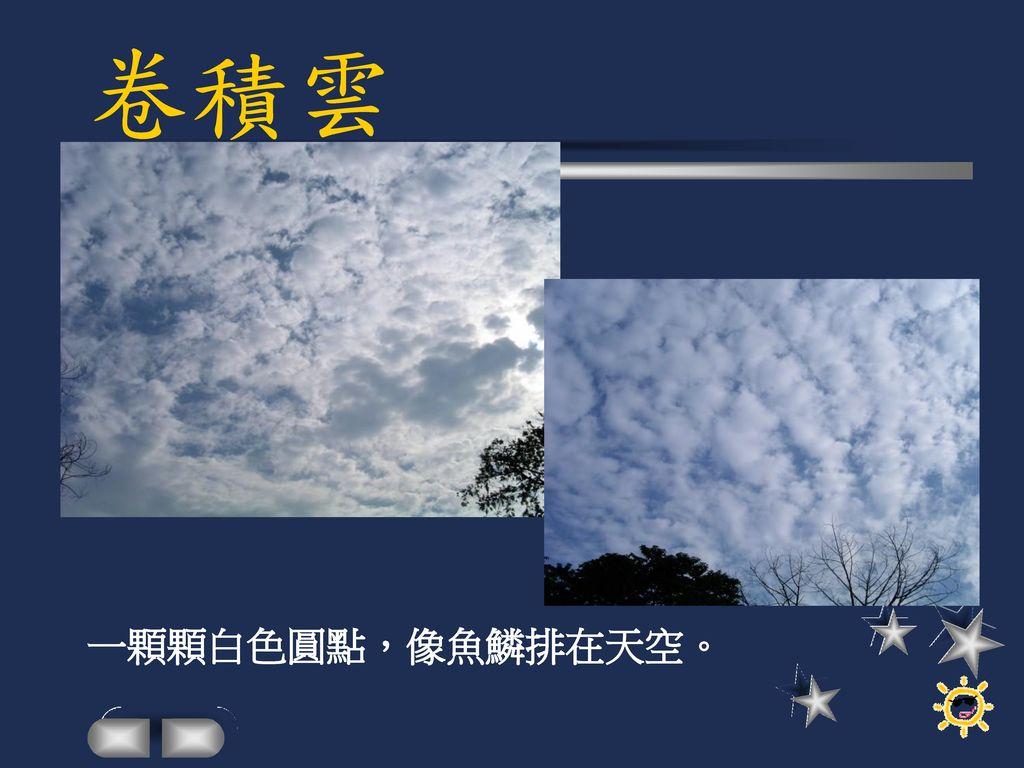 卷積雲 一顆顆白色圓點,像魚鱗排在天空。