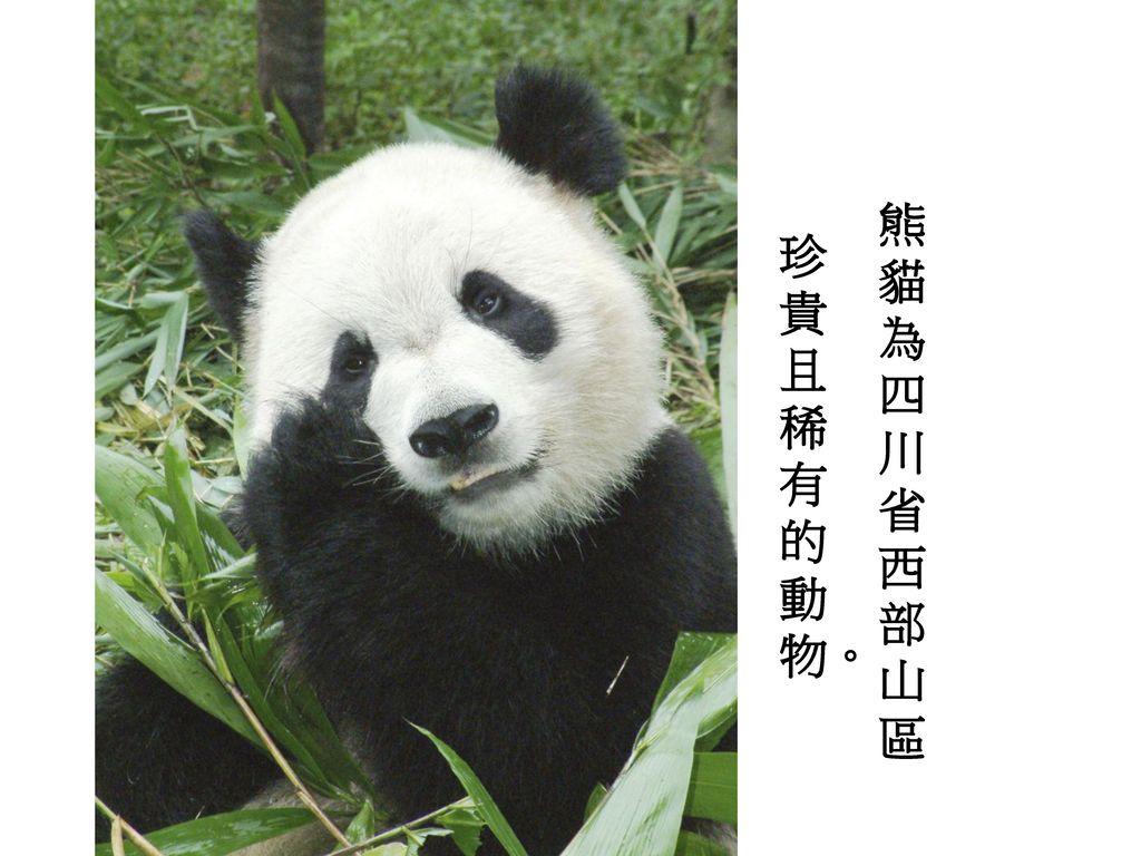 珍貴且稀有的動物。 熊貓為四川省西部山區