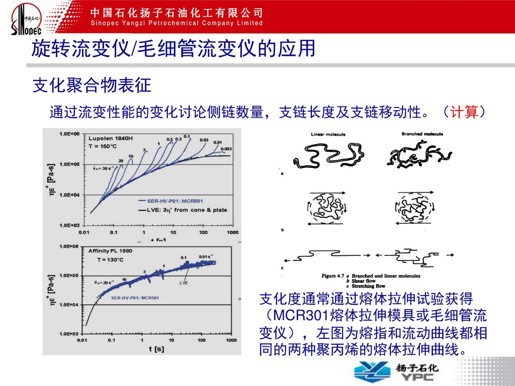 旋转流变仪/毛细管流变仪的应用 支化聚合物表征