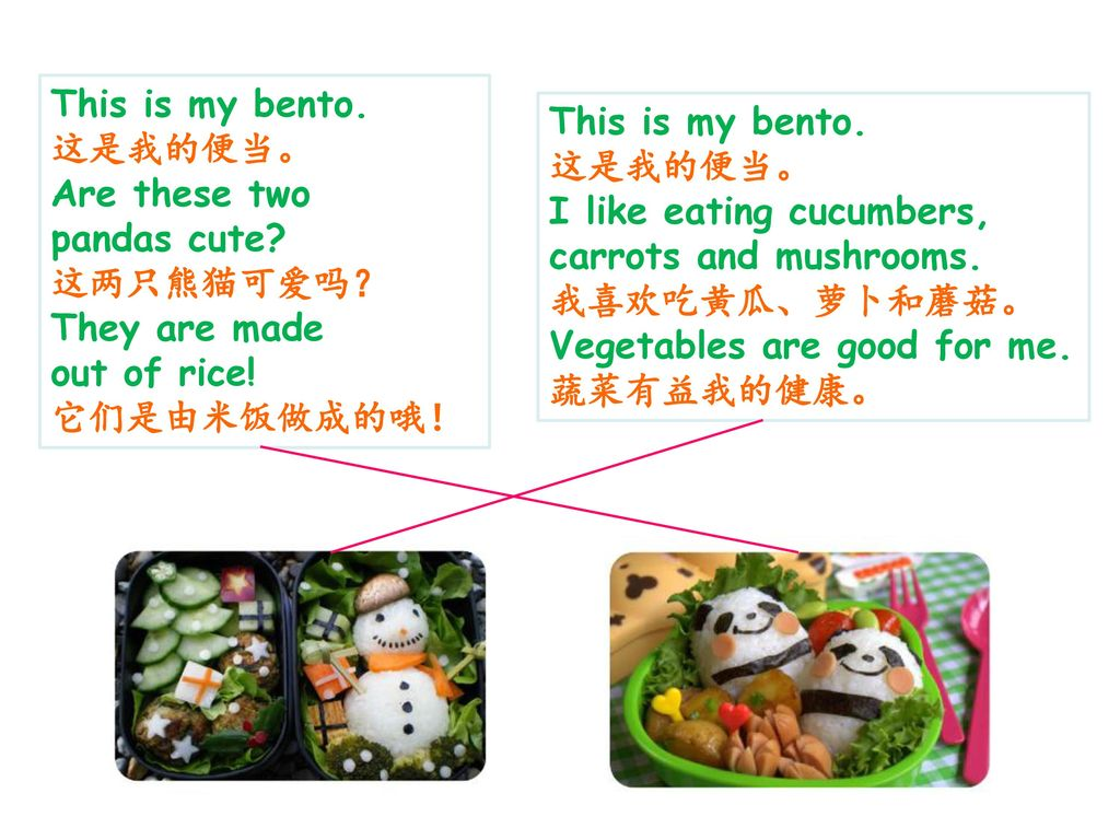 This is my bento. 这是我的便当。 Are these two. pandas cute 这两只熊猫可爱吗? They are made. out of rice! 它们是由米饭做成的哦!