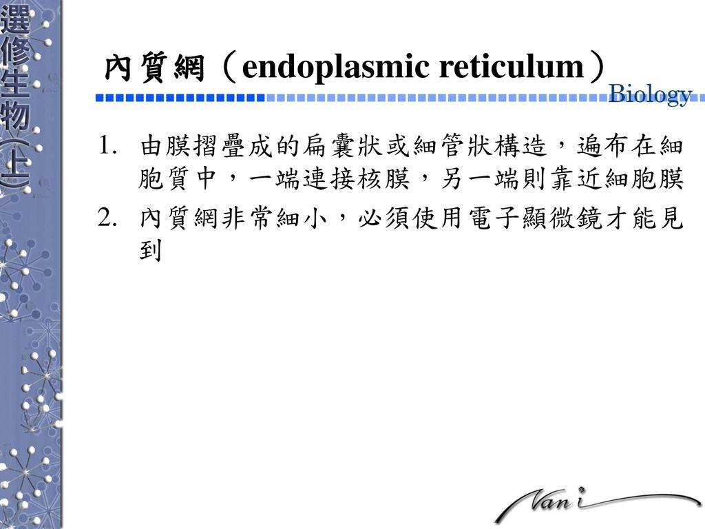 內質網(endoplasmic reticulum)