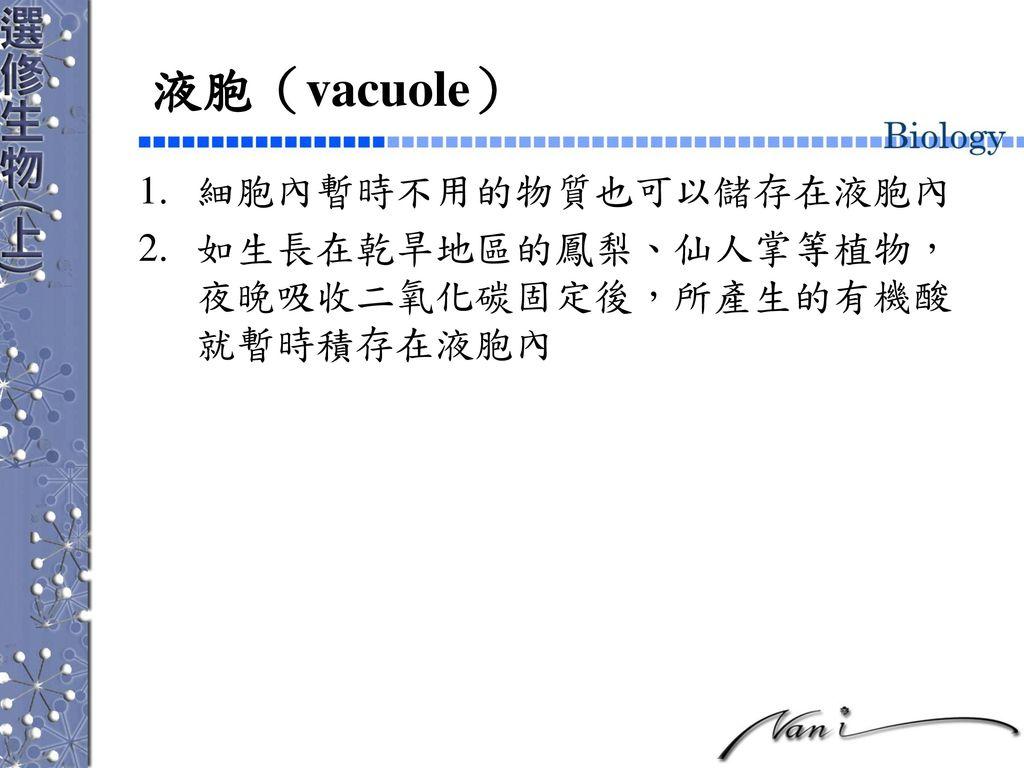 液胞(vacuole) 細胞內暫時不用的物質也可以儲存在液胞內