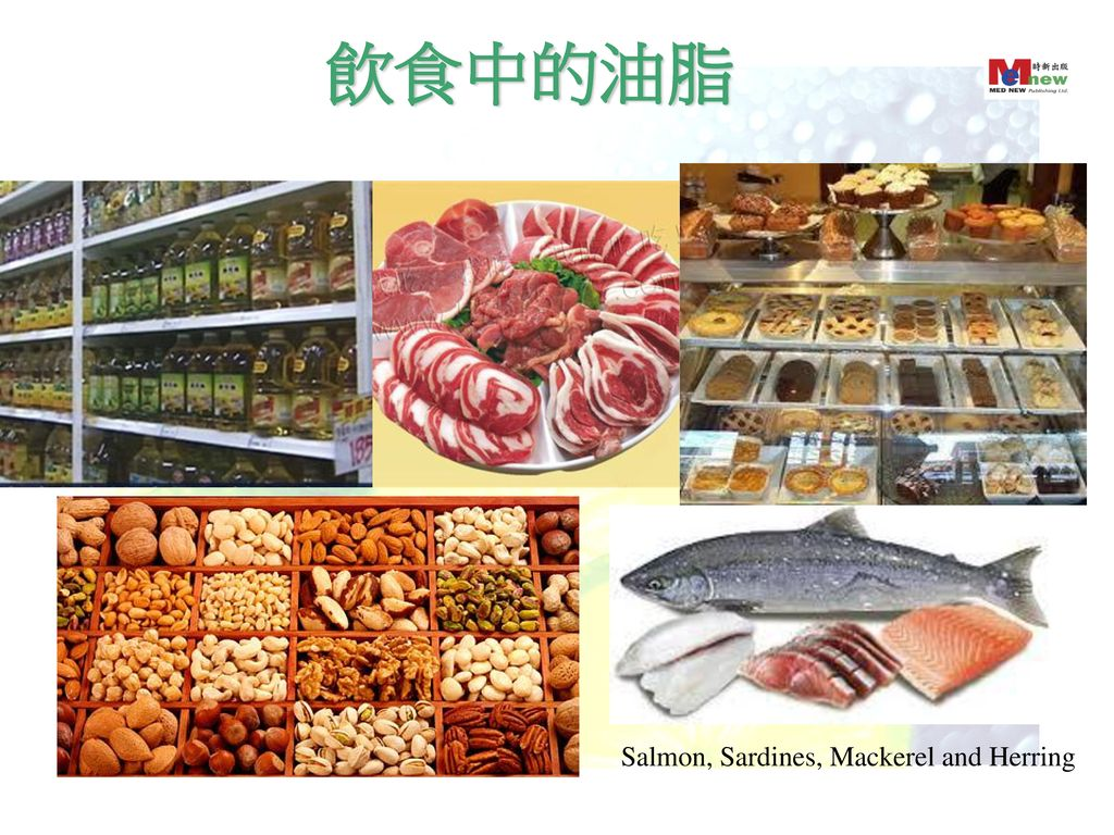 飲食中的油脂 Salmon, Sardines, Mackerel and Herring