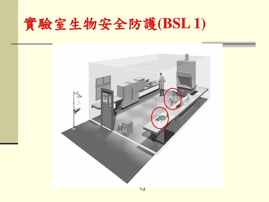 實驗室生物安全防護(BSL 1)