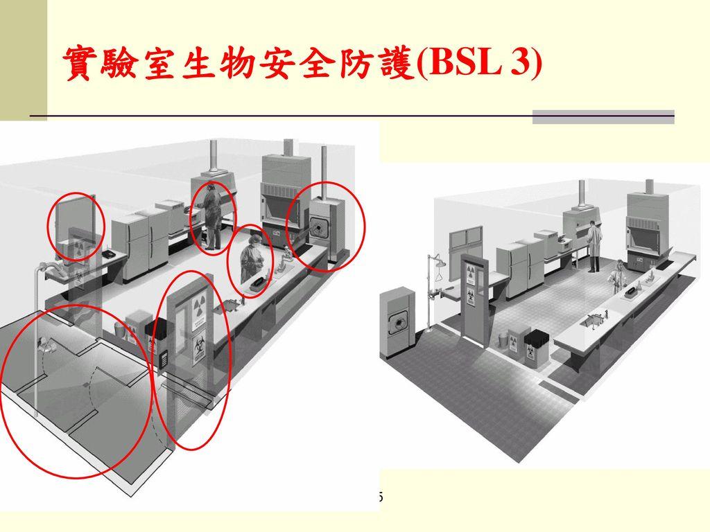 實驗室生物安全防護(BSL 3)