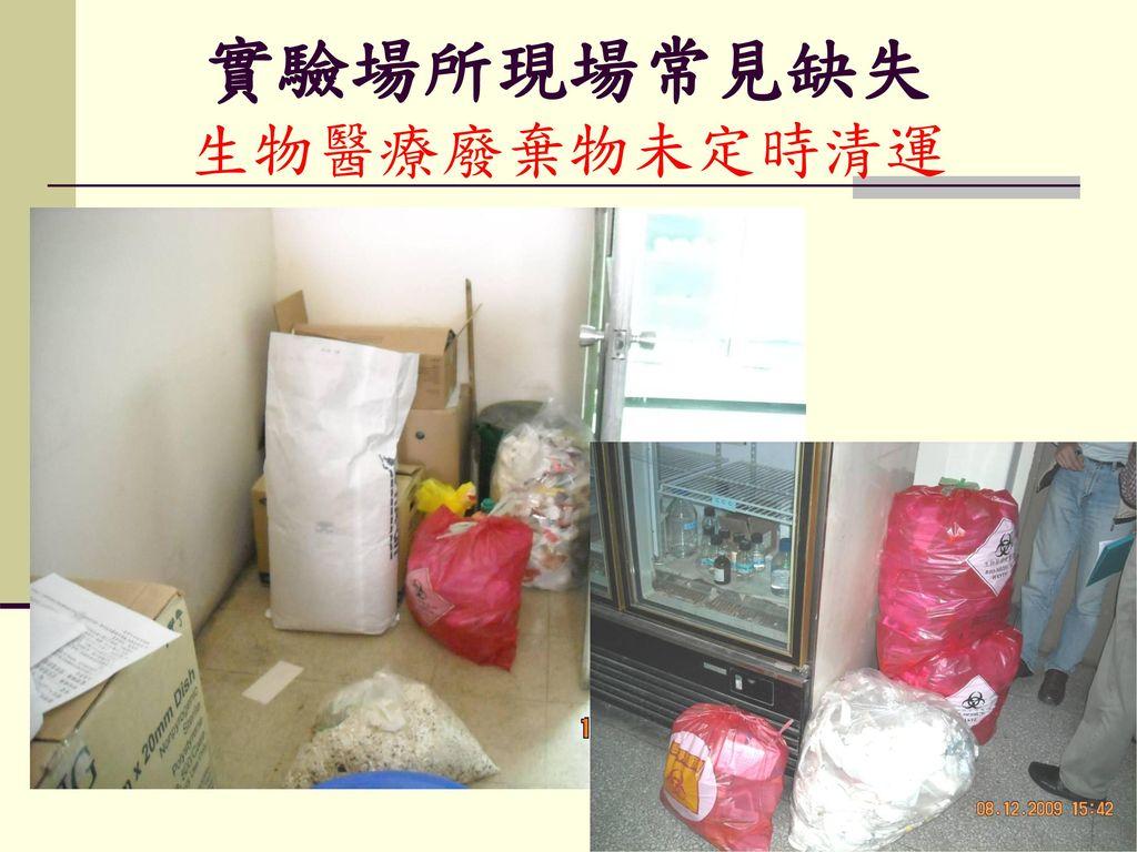 實驗場所現場常見缺失 生物醫療廢棄物未定時清運