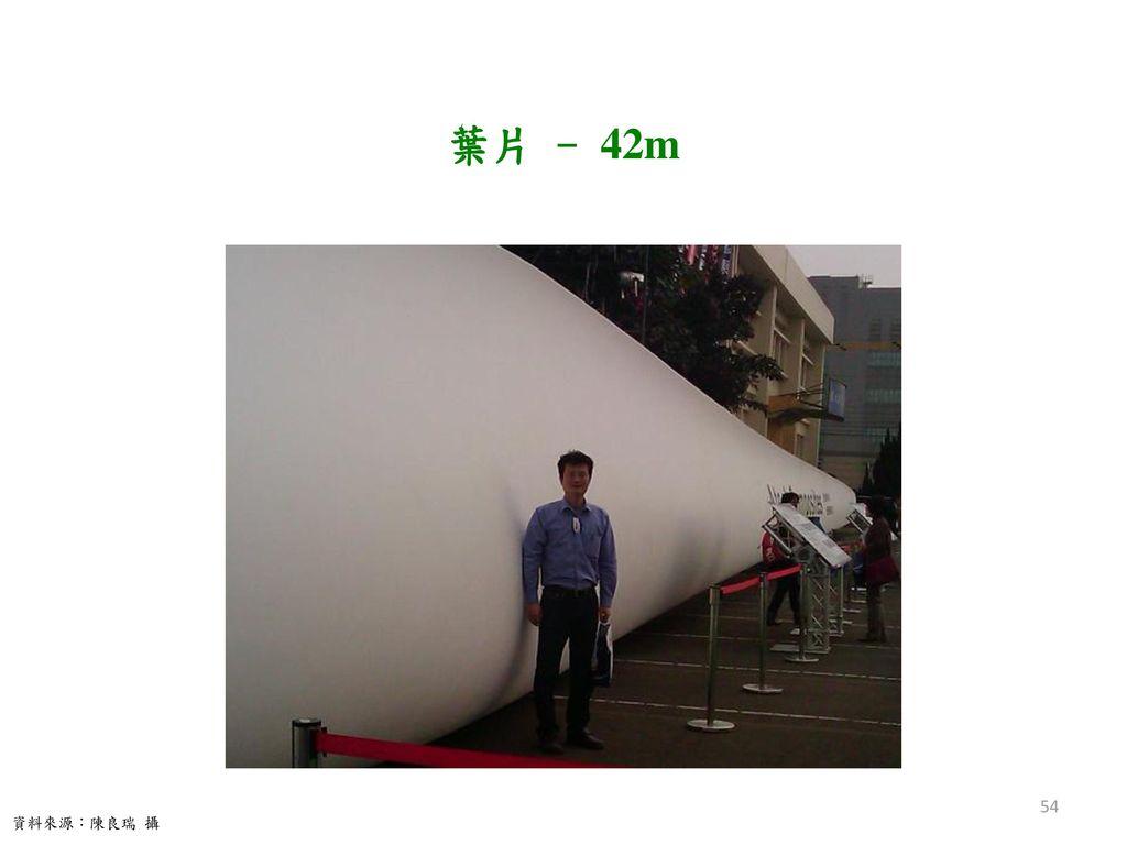 葉片 - 42m 資料來源:陳良瑞 攝