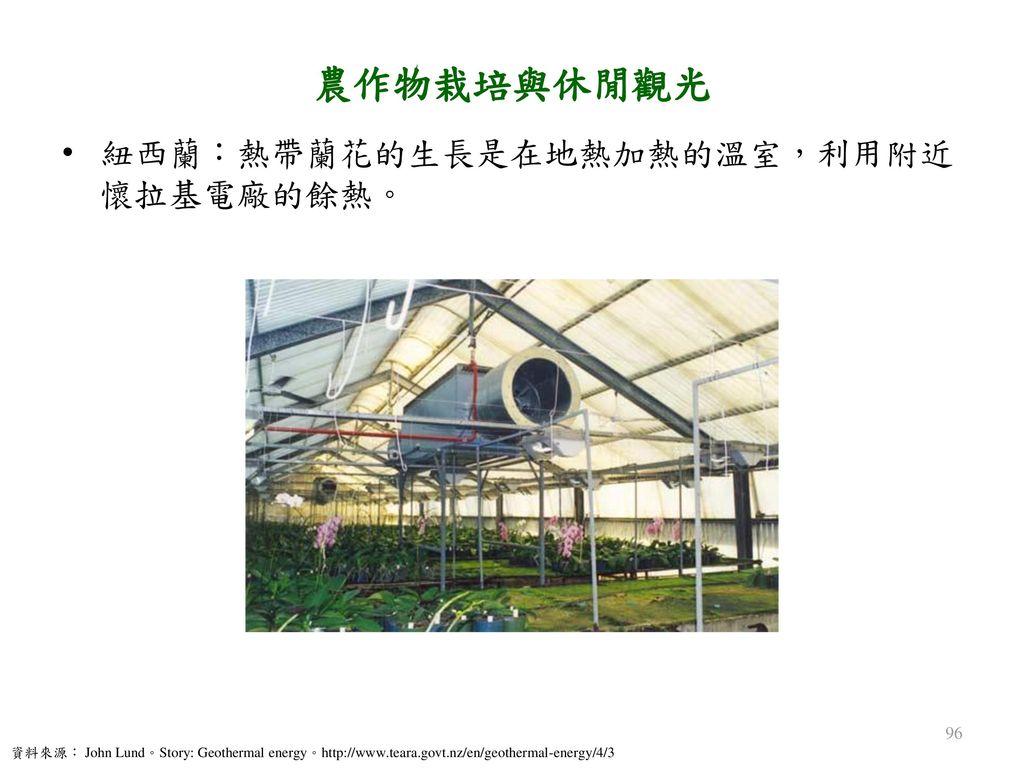 農作物栽培與休閒觀光 紐西蘭:熱帶蘭花的生長是在地熱加熱的溫室,利用附近懷拉基電廠的餘熱。