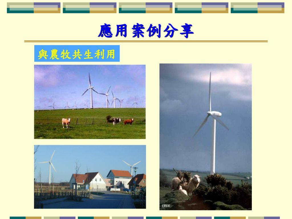 應用案例分享 與農牧共生利用